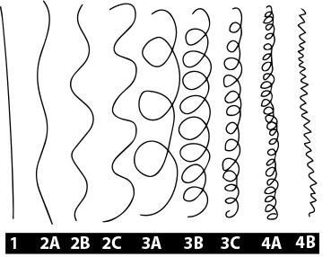 Natural-Hair-Types.gif